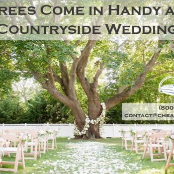 Outdoor Weddings: Working With the Landscape
